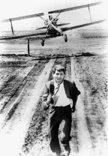 Man running from plane spraying