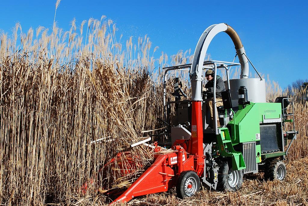 bioenergyharvest